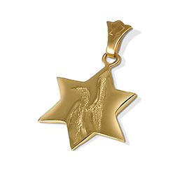 14K Peace Dove Star of David