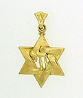 14K Gold Star of David & Chai