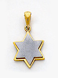 14K Yellow White Gold Star of David Pendant