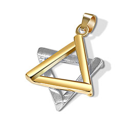 Elegant 2 Tone Gold Star of David Pendant