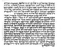 Basic Mezuzah Scroll