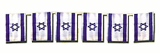 Israeli Flag Banner - 12 Feet Long