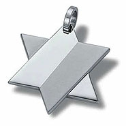 Star of David Necklace - 2-Tone