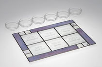 Art Glass & Metal Seder Plate - Beveled Lavender