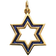14K Gold Star of David Pendant - Enameled