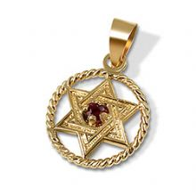 14K Gold Star of David with Ruby