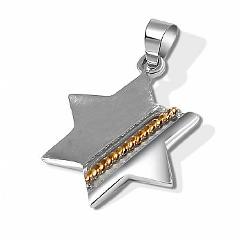 14K 2 Tone Gold Star of David Pendant