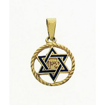 14K Gold Star of David Medallion - Enameled