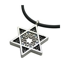 Stainless Steel Star of David Necklace