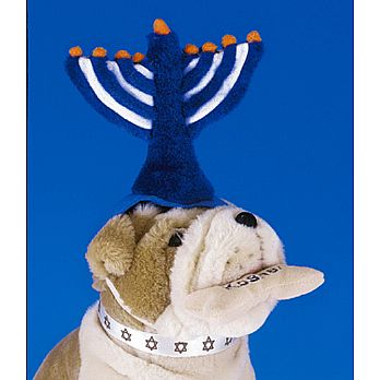 Jewish Plush Pet Toy - Menorah Hat