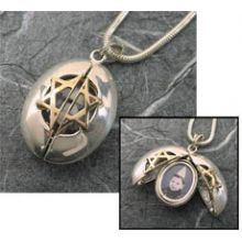 Silver/Gold Lady Bug Locket
