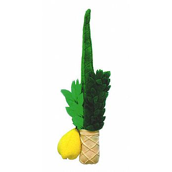 Plush Lulav & Etrog Childrens Set