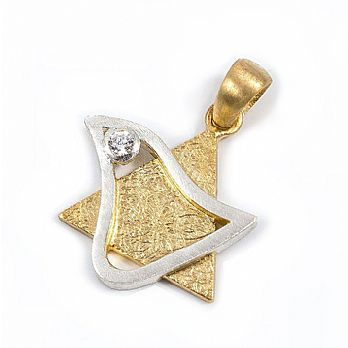 Sterling Silver and 14K Dove Star of David with CZ
