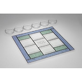 Art Glass & Metal Seder Plate - Spring Fresh