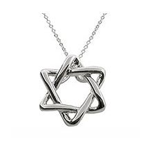 Tiffany Inspired Star of David Necklace