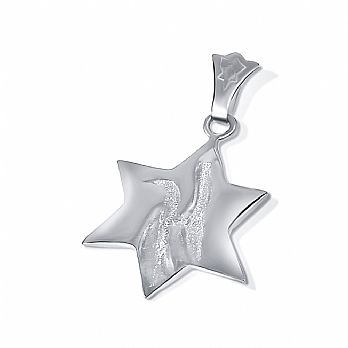 Sterling Silver Peace Dove Star of David