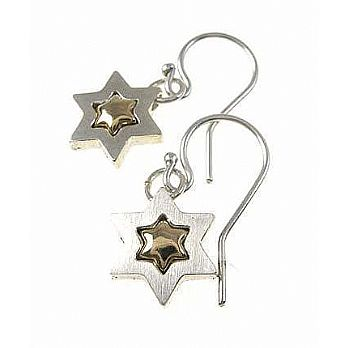 Silver/Gold Star of David Earrings