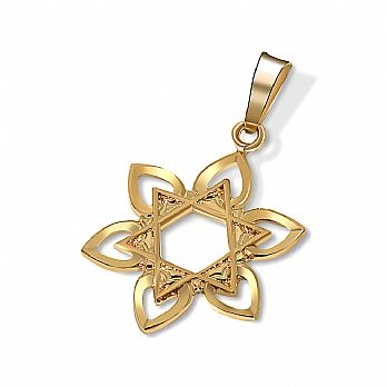 14K Gold Star of David Pendant - Hearts