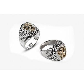 Sterling Silver & 9K Jewish Ring - Lions / Western Wall